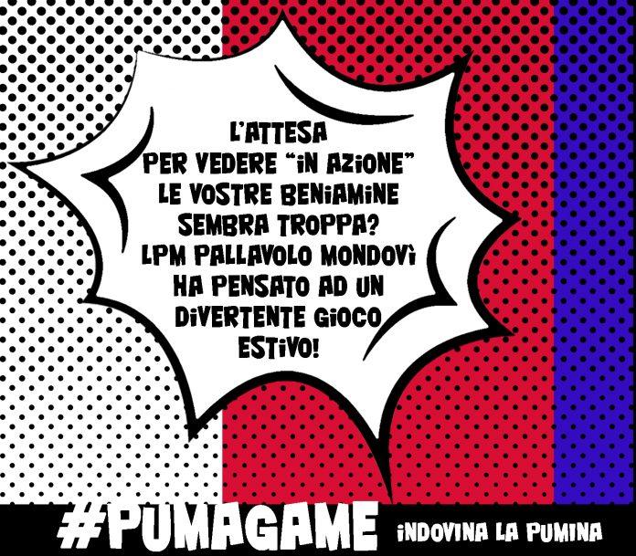 Logo Puma Game