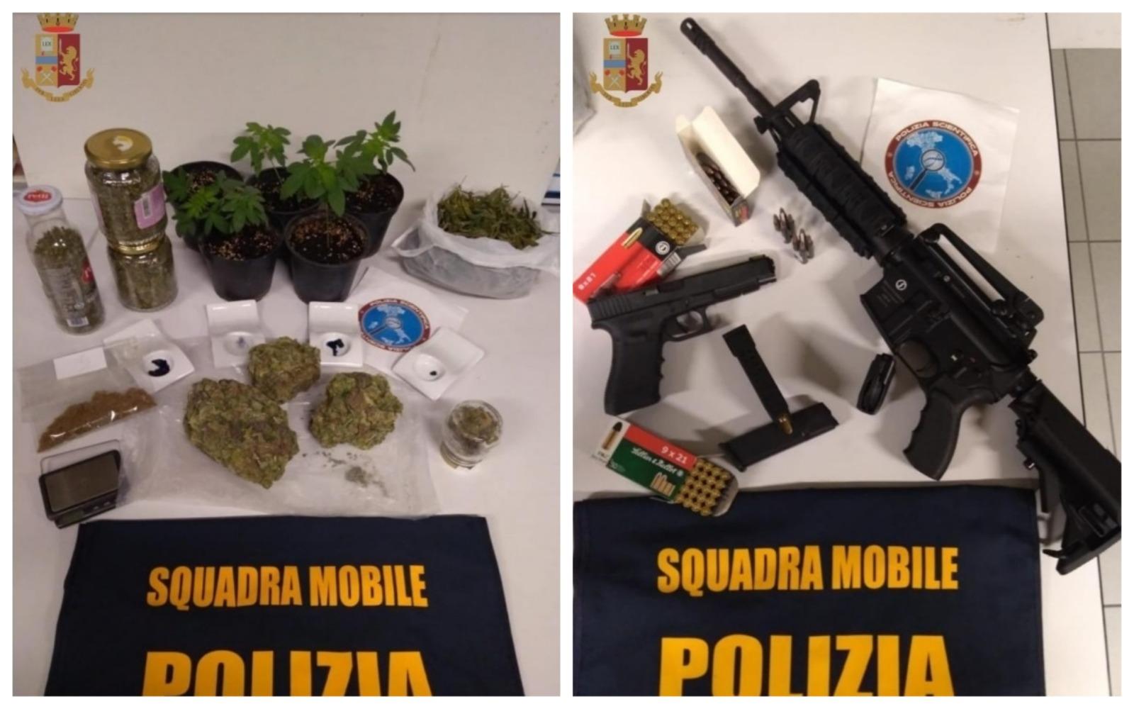 Saluzzo – Una serra di marijuana nel container dell'azienda di famiglia - IdeaWebTv
