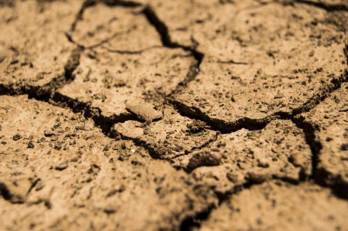confagricoltura siccità